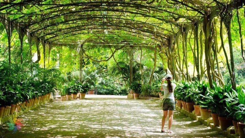 Malaga görülecek yerler Jardin Botanico