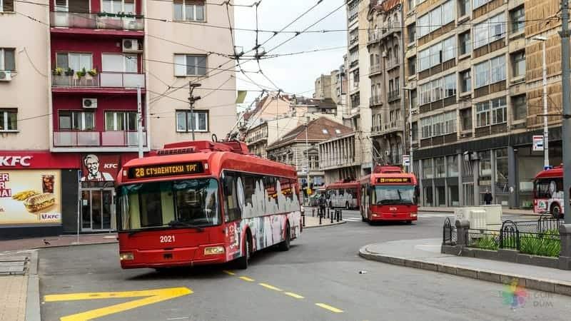 belgrad gezi rehberi şehir içi ulaşım