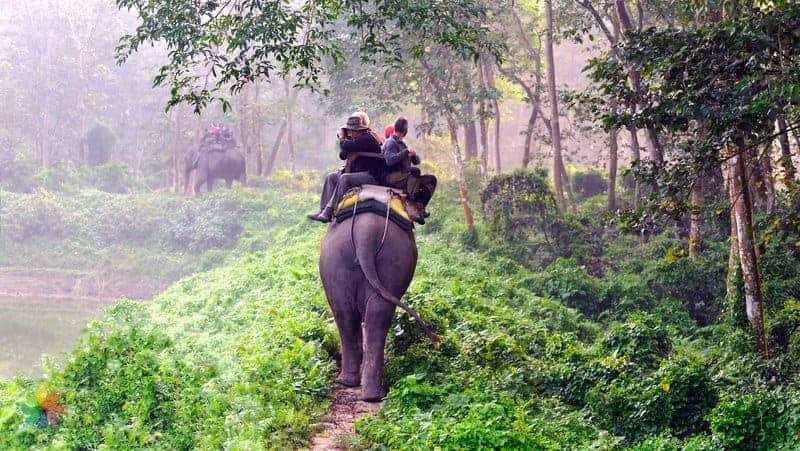 nepal gezilecek yerler Chitwan national Park