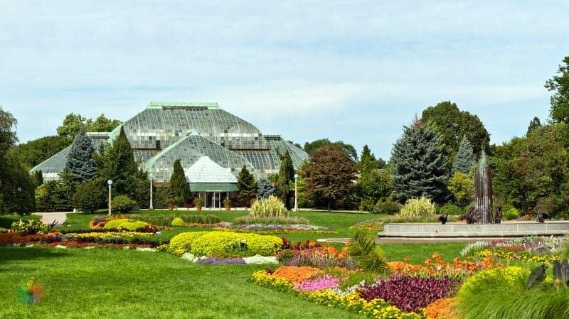 Şikago gezilecek yerler Garfield Park Conservatory