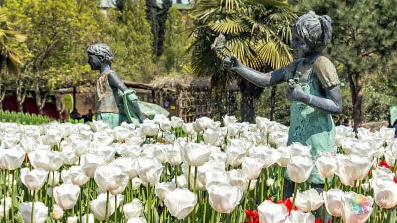 Nezahat Gökyiğit Botanik Bahçesi istanbul gezi notları