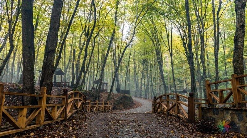 belgrad ormanı istanbul gezilecek yerler