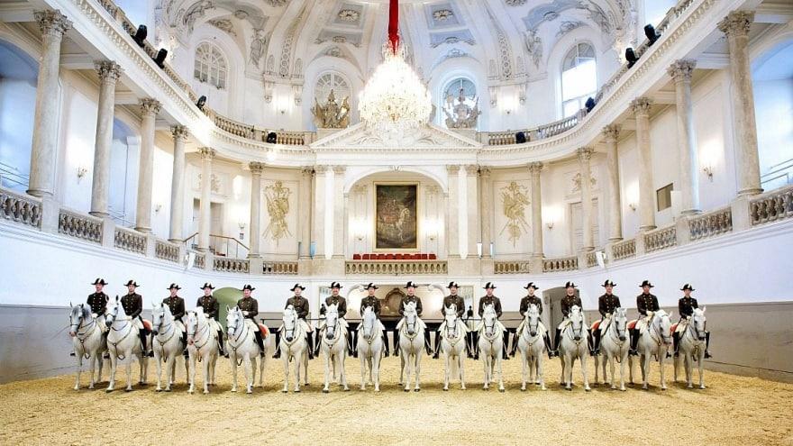 Viyana'da neler yapılmalı? İspanyol Binicilik Okulu Viyana